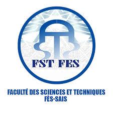FST FES
